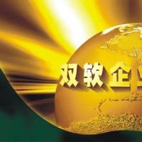 滨州申报双软认定的流程,需要什么材料
