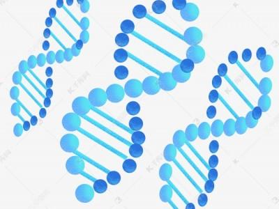 求购生物基因授权发明专利